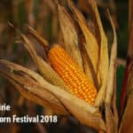 Sweet corn fest 2018