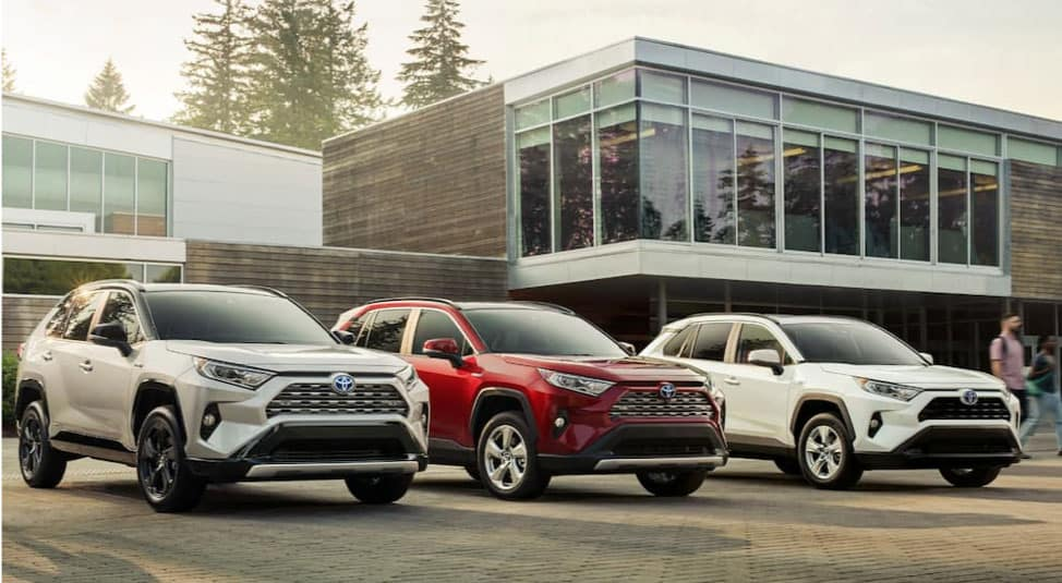Three 2019 Toyota RAV4s are parked in front of a building with large glass windows.